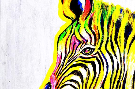 Groovy Zebra