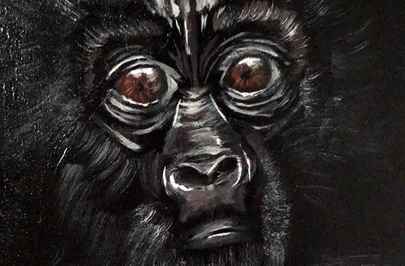 Baby_Gorilla_720