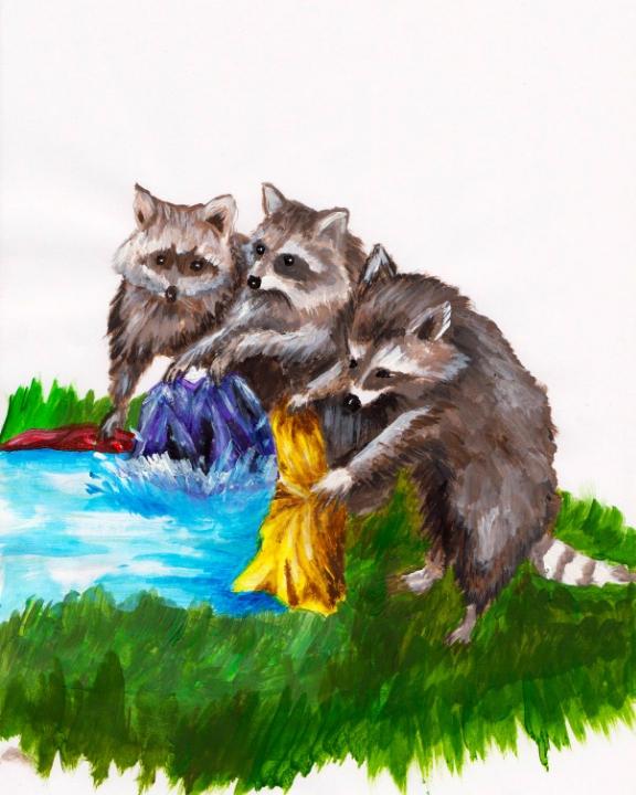 Die drei Waschbären
