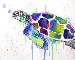 Josy die Schildkröte